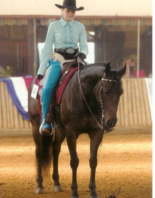 Wat willen energie en paarden vertellen.